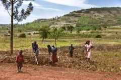 KIBUYE, RUANDA, AFRÄ°CA - 11. SEPTEMBER 2015: Unbekanntes die afrikanischen Arbeitskräfte stockbilder