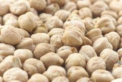 Kichererbsen (Kichererbse-Bohnen) - Makro Stockbild