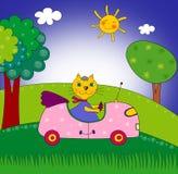 Kicia na samochodzie Fotografia Royalty Free