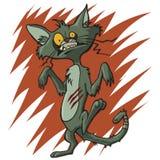 Kiciunia kota żywy trup royalty ilustracja