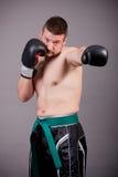 Kick-boxer Stock Image