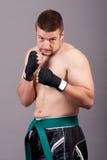 Kick-boxer Stock Photo