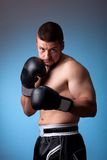 Kick-boxer. Training before fight Stock Images