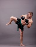 Kick-boxer Royalty Free Stock Photography