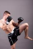 Kick-boxer Royalty Free Stock Images