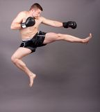 Kick-boxer Stock Photography
