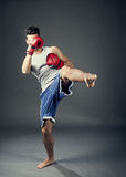 Kick boxer Royalty Free Stock Photos