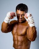 Kick-boxer in fighting stance Royalty Free Stock Photo