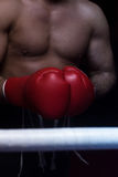 Kick boxer with a focus on the gloves Stock Image