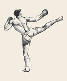 Kick Boxer Stock Images