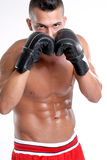 Kick boxer. Stock Photography