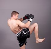 Kick-boxer Royalty Free Stock Photos