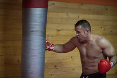Kick boxer training on a punching bag Royalty Free Stock Photo