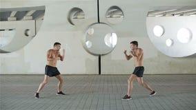Kick-boxers training punching. stock video footage