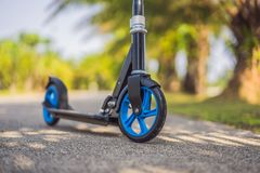 Kick scooter in the park. Outdoor activity for children on safe residential street. Active sport for preschool kid.  royalty free stock photos