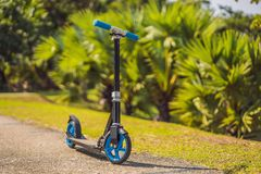 Kick scooter in the park. Outdoor activity for children on safe residential street. Active sport for preschool kid.  royalty free stock photography