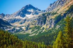 Kick Tatras i Slovakien royaltyfri fotografi