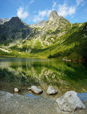 Kick Tatras i Slovakien royaltyfria bilder