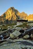 Kick Tatras i Slovakien fotografering för bildbyråer
