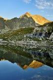 Kick Tatras i Slovakien royaltyfri foto
