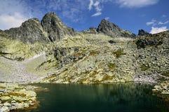 Kick Tatras i Slovakien arkivfoton