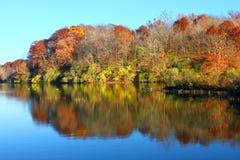 Kickapoo delstatspark Illinois Arkivbilder