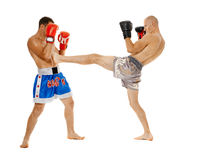 Kickbox战斗机争吵 免版税库存照片