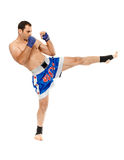 Kickbox fighter executing a kick Royalty Free Stock Image