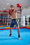 Kickbox fighter shadow boxing in the ring Royalty Free Stock Images