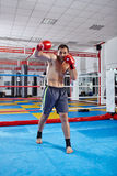Kickbox fighter shadow boxing in the ring Stock Photography
