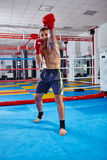 Kickbox fighter shadow boxing in the ring Royalty Free Stock Image