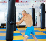 Kickbox fighter training with the punch bag Stock Image