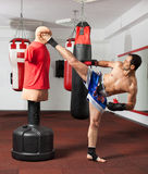 Kickbox fighter working with the dummy Stock Image