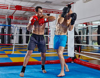 Kickbox fighters in the ring Royalty Free Stock Photo