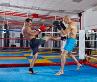 Kickbox fighters in the ring Royalty Free Stock Photography