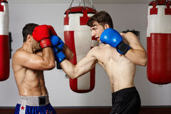 Kickbox fighters sparring in the gym Royalty Free Stock Images