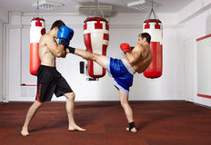 Kickbox fighters sparring in the gym Stock Image