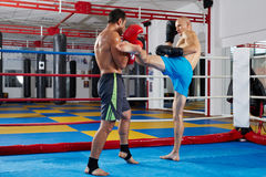 Kickbox fighters sparring in the ring Royalty Free Stock Photo