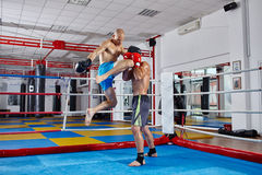 Kickbox fighters sparring in the ring Stock Image