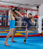 Kickbox fighters sparring in the ring Royalty Free Stock Images