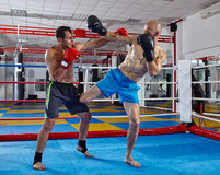 Kickbox fighters sparring in the ring Royalty Free Stock Photos