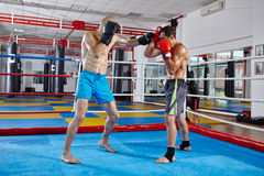 Kickbox fighters sparring in the ring Royalty Free Stock Photography