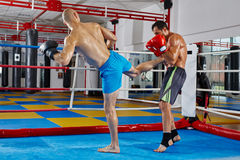 Kickbox fighters training in the ring Royalty Free Stock Photos