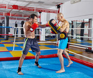Kickbox fighters training in the ring Royalty Free Stock Photography