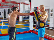 Kickbox fighters training in the ring Royalty Free Stock Images
