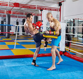 Kickbox fighters training in the ring Royalty Free Stock Photo