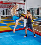 Kickbox fighters training in the ring Stock Image