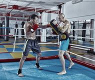 Kickbox fighters training in the ring Stock Photo