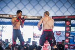 Kickboxen-Wettbewerb Lizenzfreie Stockbilder