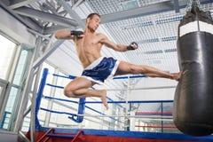 Kickboxer. royaltyfri fotografi